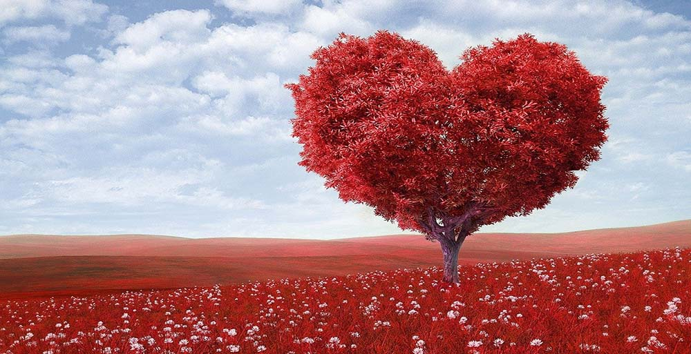 10 Romantic ideas for Valentine's day